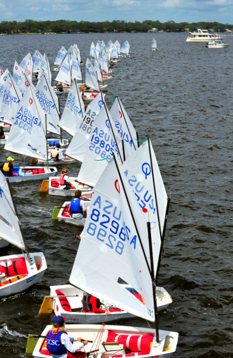 Junior sailing fleet
